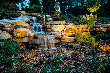 Landscaping around waterfall