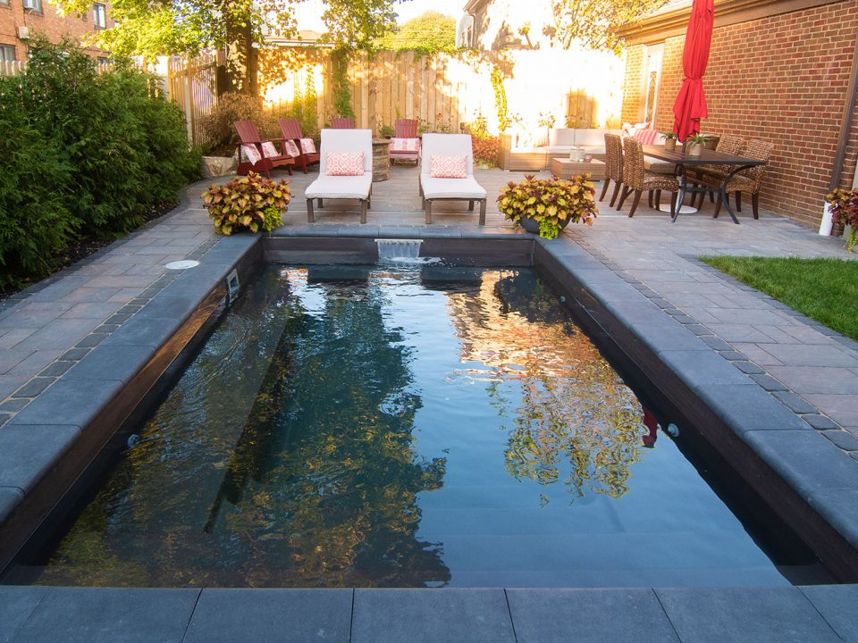 Backyard Cocktail Pool with Paver Patio